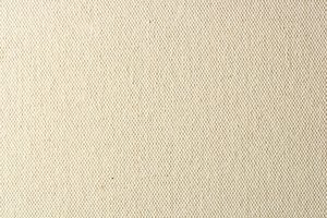 New White Canvas Texture